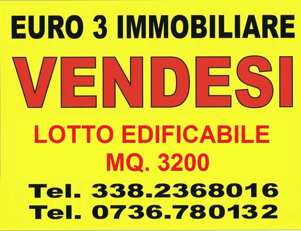 1199 SALE ASCOLI PICENO LU BATTENTE1