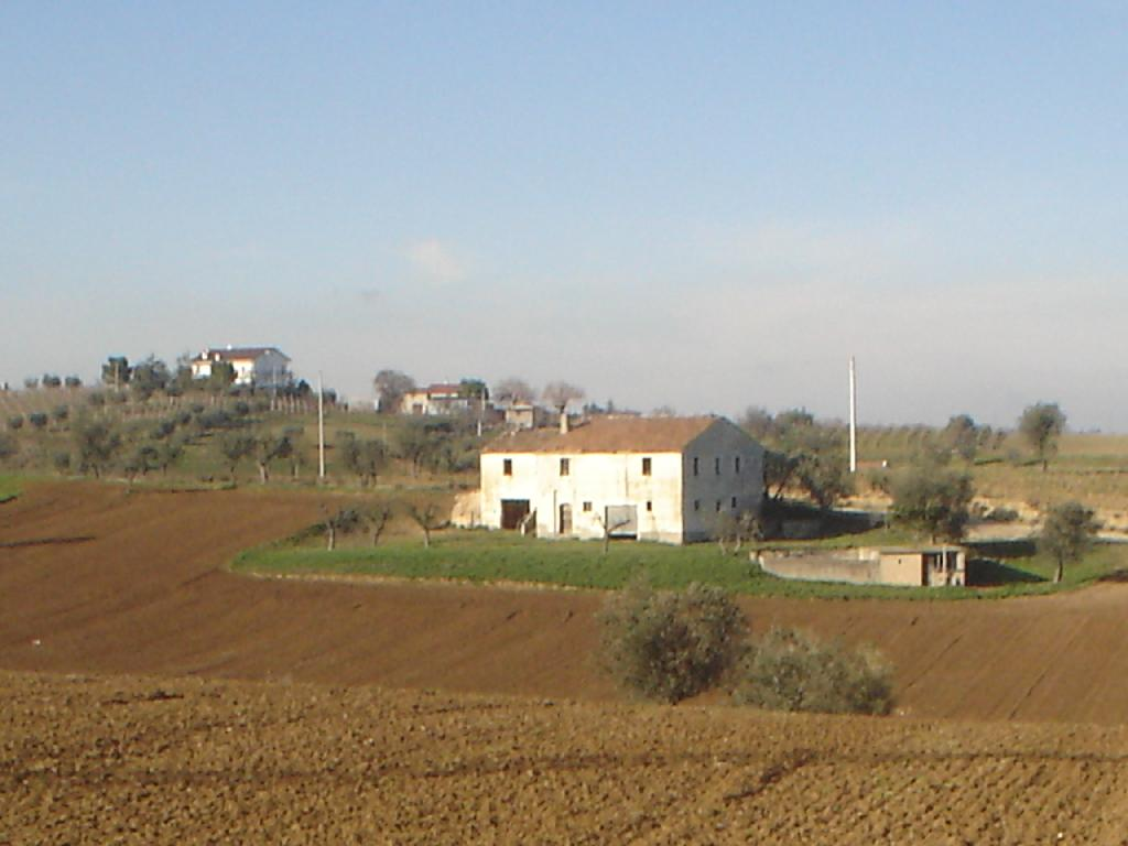 Azienda Agricola MASSIGNANO LA CASA DELLE SPEZIE